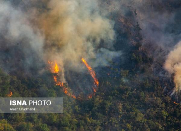 🔺 «تغییرات اقلیمی» عامل مهم آتشسوزی زمستانه جنگلهای شمال کشور