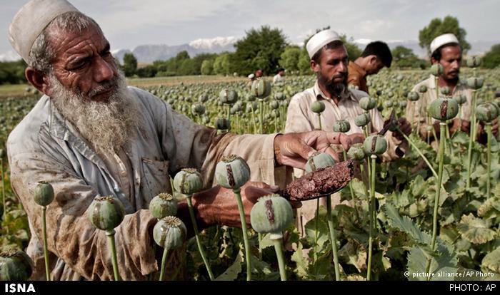 🔺 هشدار؛ افزایش قاچاق «شیشه» از افغانستان به ایران/کاهش تعداد ولایتهای «بدون تریاک» درافغانستان