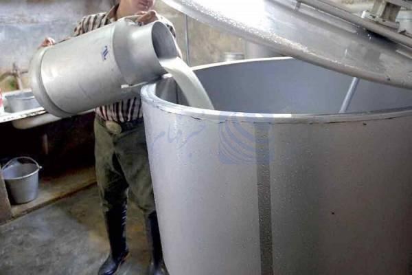 🔺 هزینههای تولید شیرخام افزایش یافته است/ دامداران تحت فشارند