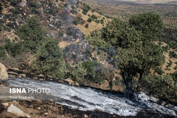 🔺 درخواست نماینده سردشت و پیرانشهر برای کمکرسانی به مهار آتشسوزی در جنگلهای کولهسه سردشت