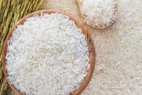 🔺 ٧٠ هزار تن برنج در بنادر مانده است/ ممنوعیت واردات از مهر حذف شود